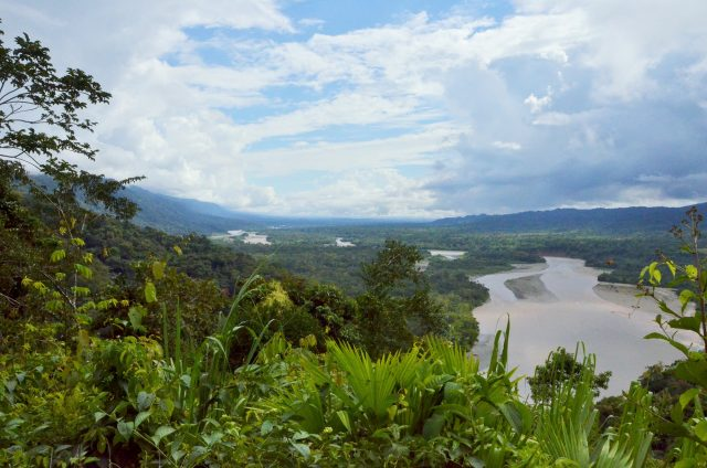 Manu National Park- cusco close rainforest