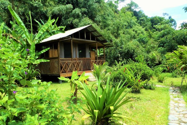 lodges in manu national park - guadalupe