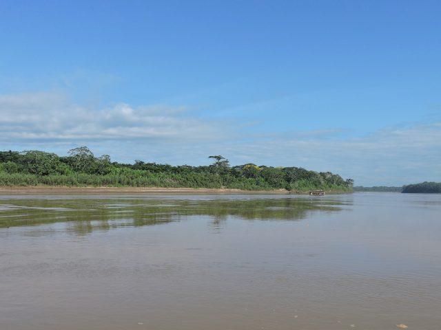 https://wildwatchperu.com/wp-content/uploads/2020/01/tambopata-river-2-640x480.jpg