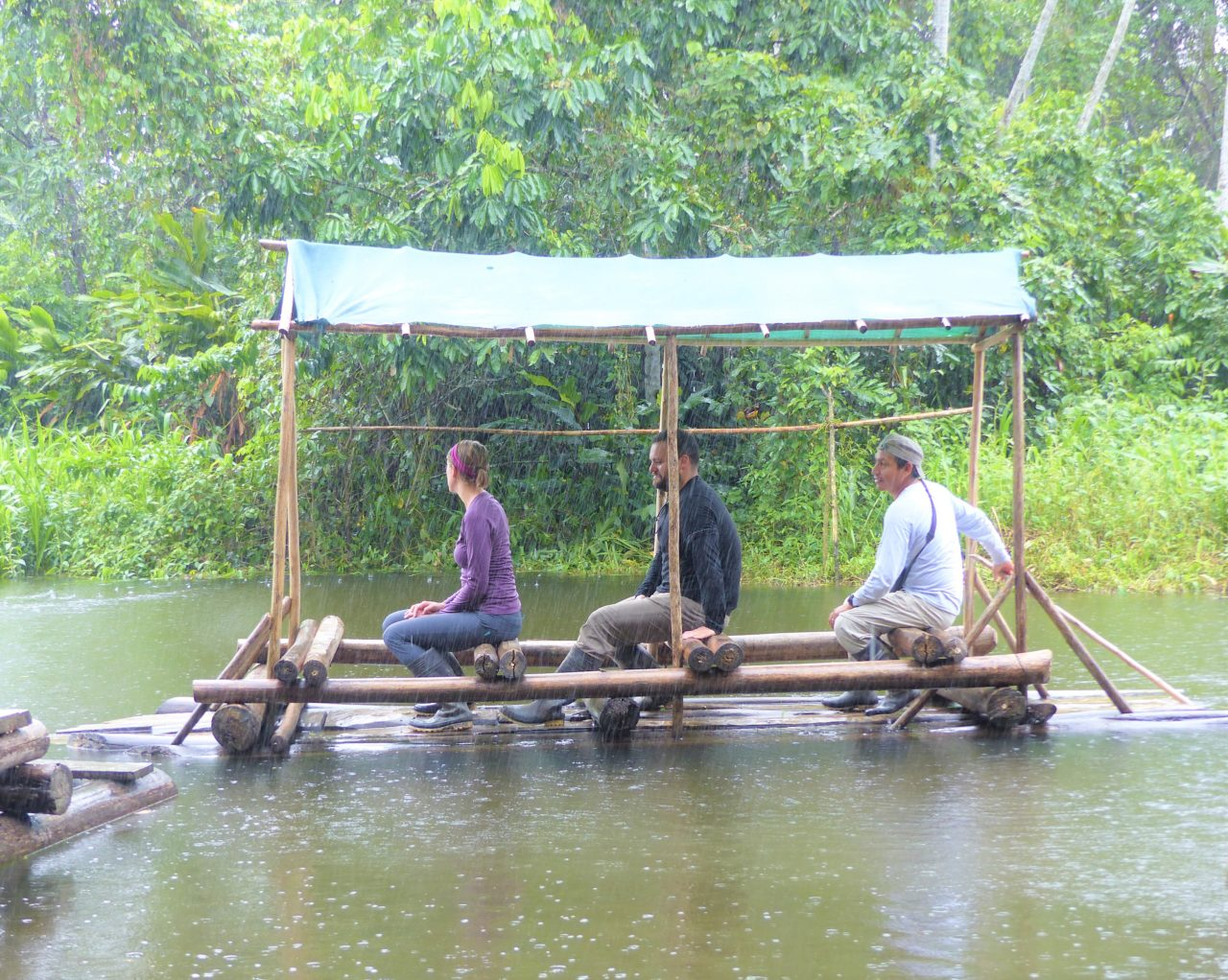 https://wildwatchperu.com/wp-content/uploads/2021/06/amazon-rainforest-peru-2021-1280x1022.jpg