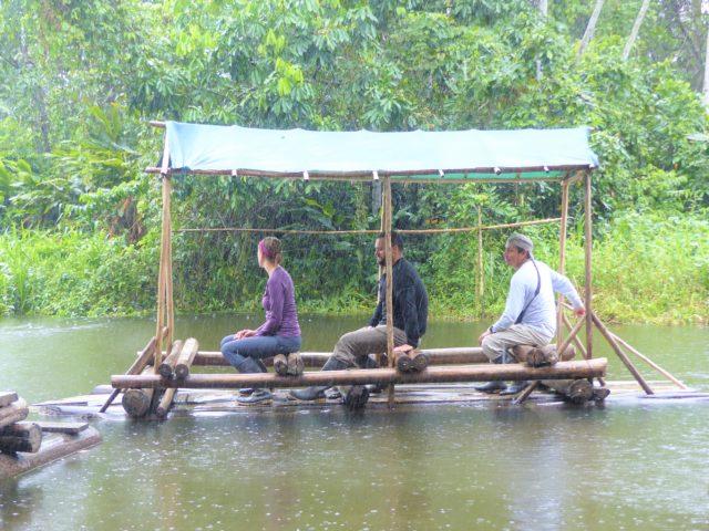 https://wildwatchperu.com/wp-content/uploads/2021/06/amazon-rainforest-peru-2021-640x480.jpg